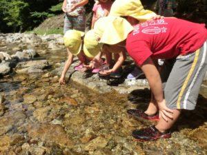 幼児と川の生きもの観察