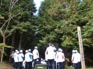 森林実地体験
