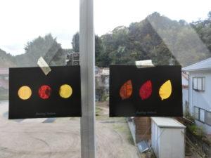 落ち葉のステンドグラス